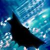 chiroptophobic: (Bat; Silhouette)