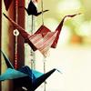 lilywhites: (Stock - paper cranes)