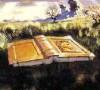 pameladean: (The Dubious Hills)