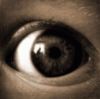 iconra: (the eye)