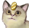 nymeria: an adorable picture of a meowth drawn to look more like a real cat.  (meowth it's cute)