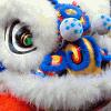 ysengrin: (Lion-Dancer)