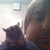ktiedt: Gemma, my sugar glider, on my shoulder (Default)
