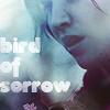 picaresque: Katniss (# thg ; the bird of sorrow)