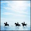 kerri: (Base - Ride along the shore)