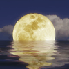 painandlight: (moon in the water)