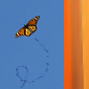 barefootsong: Monarch butterfly against a clear blue sky, with orange stripes at right side of icon. (Schmetterling!)
