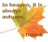 "tree_and_leaf: Autumnal sycamore leaf, text reads: ""In heaven, it is always autumn - Donne"" (autumn)"