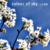 daidoji_gisei: blooming tree branches against blue sky (Color of Sky)
