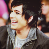 paraka: Adam Lambert Laughing (AI8-A-*laughs*)