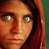 owly: (wartorn, afghani girl, refugee, survivor, ng)