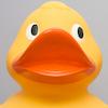 ewx: (Duck)