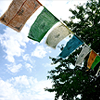 autumnvampire: (Prayer flags)