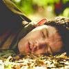 mustbethursday: Merlin: Merlin in Leaves (Merlin: Merlin in Leaves)