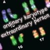 "janice_lester: portion of karyotype shown with legend ""ordinary karyotype, extraordinary person"". (ordinary karyotype--extraordinary person)"