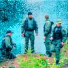 wendelah1: My team (Stargate SG-1)