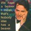 primroseburrows: (beaver)