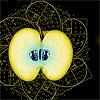 existence: Fibonacci apple: fringe (restlessly coming eden)