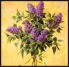 snacky: (lilacs)