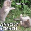 snacky: (snacky smash)