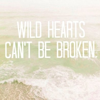 lucida: Text: Wild Hearts Can't Be Broken (wild hearts can't be broken)