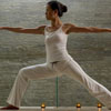 muck_a_luck: (Yoga Warrior II)