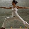 muck_a_luck: (Yoga Warrior II)