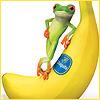 bettina: (life is banana)