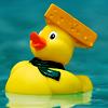 roflbox: (cheesy hat pride)