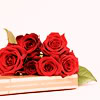 aella_irene: red roses on a book (roses: red: book)