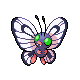 chierii: (Shiny Butterfree!)