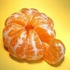 jesse_the_k: Peeled orange with one section pulled out (shared sweetness)