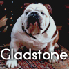 theorclair: (gladstone)