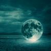 paintyourlunch: (moonsea)