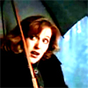 jekesta: Scully, scared of frogs. (Scully scared of frogs ys)