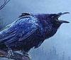 vulgarweed: (squonk_by_aurora_starwing)