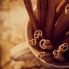 cinnabarheart: (Color - Brown Cinnamon)