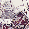 teej: by <user name=turlough> (snow)