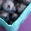 cyprinella: A blue pint basket full of blueberries (blueberries)