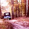 bluemeridian: (TW :: Stiles :: Jeep Jeep)