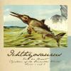 quillori: illustration of an ichthyosaurus (primeval: ichthyosaurus)