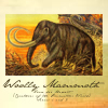 quillori: illustration of a woolly mammoth (primeval: woolly mammath)