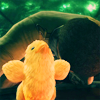 ff13_fanfiction: (Chocobo Chick)