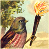 quillori: illustration from Who Killed Cock Robin of a bird holding a flaming torch (subject: flaming torch, theme: fairy tales (cock robin), stock: flaming torch)