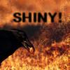 teigh_corvus: ([Personal] Ooo! Shiny!)