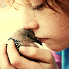 randomramblings: (Kissing a Dove)