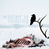 annan_water: (Winter is Coming)