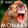 rachelmanija: (It was a monkey!)