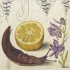 perverse_idyll: (slug lemon)