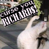 thehefner: (Curse you Richards Kitty!)